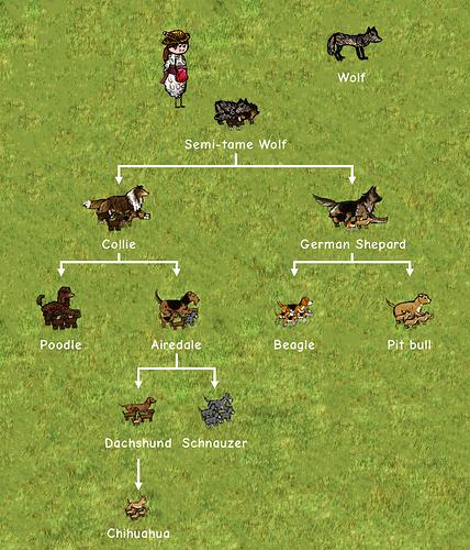 Dogs-Family-Tree